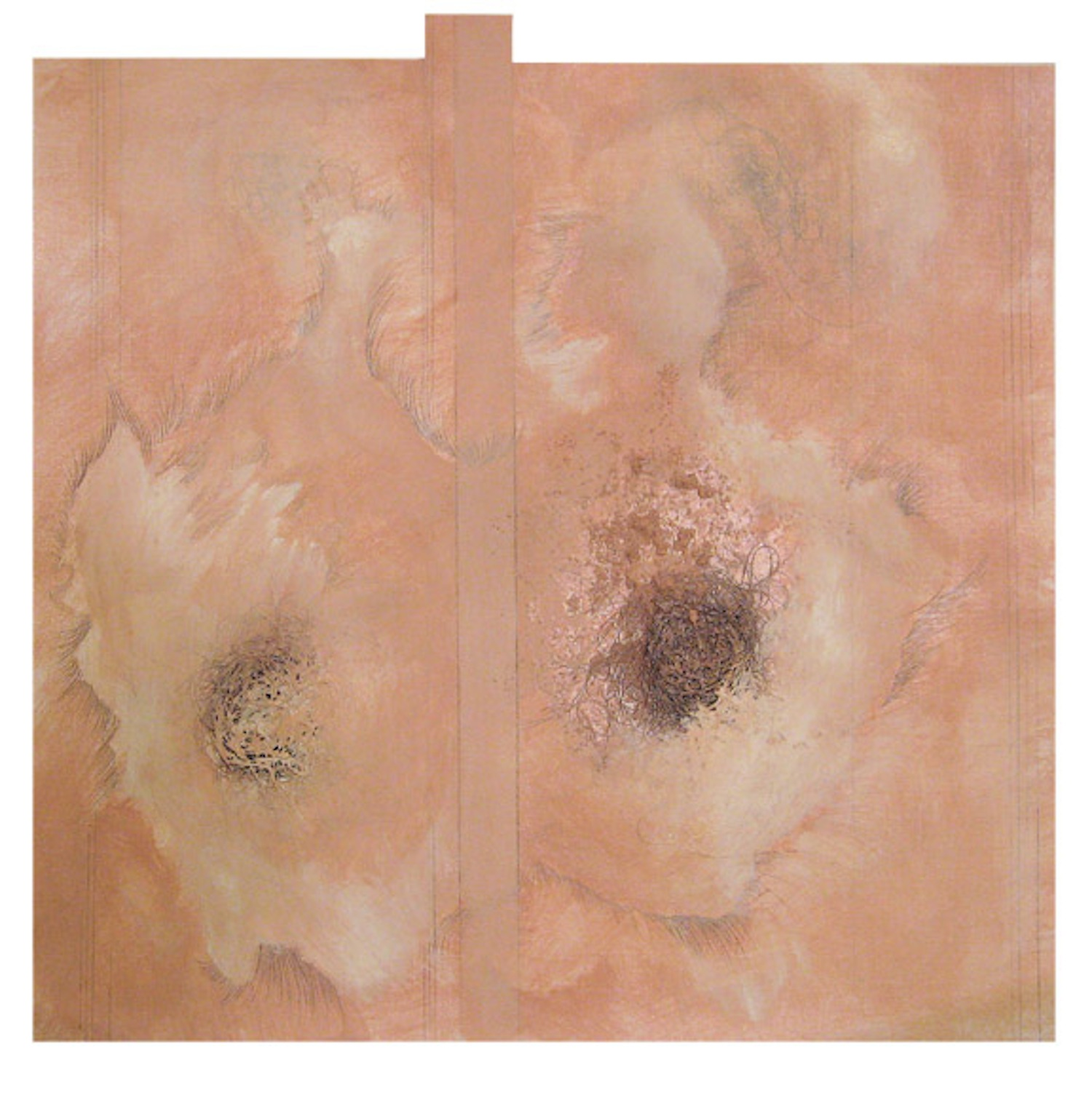 DOPPELGANGER SERIES: Untitled  artist's hair, salt, acrylic, graphite on paper with leather frame  16in. x 16in.  Private Collection