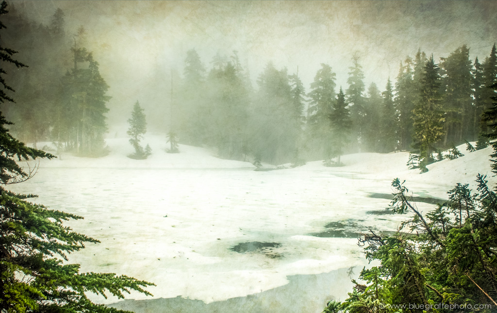 The frozen lake surrounded by hemlock and cedar and blanketed in mist.