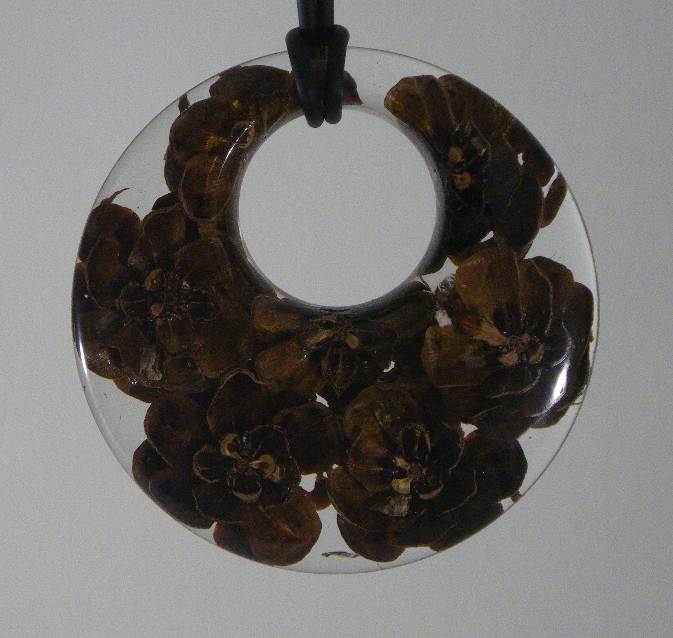 Pine Cones in clear resin