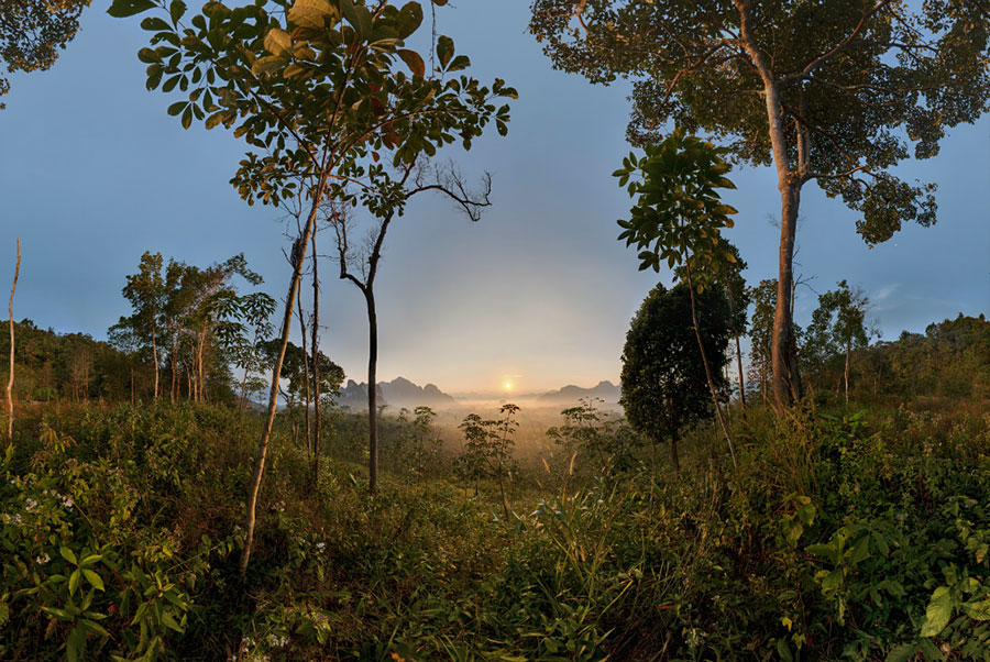 Khao Sok National Park, sunrise, SE Thailand, 2008  VIEW FULLSCREEN