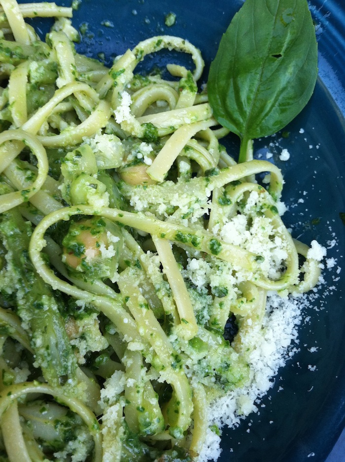georgehirsch-pesto_recipe.JPG