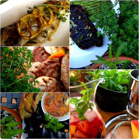 Herbs w 5 dishes .png