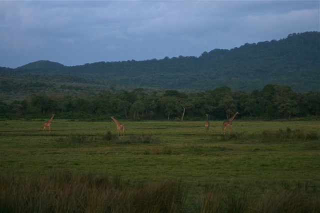 Tanzania (2).jpg