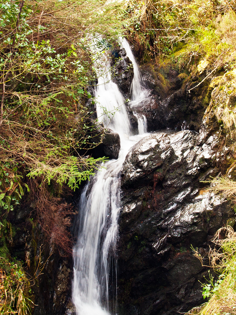 Tollymore Tumble