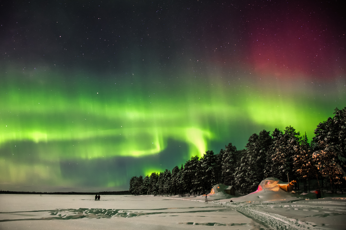 Highly Commended - PDI - Aurora - by Lesley Porter