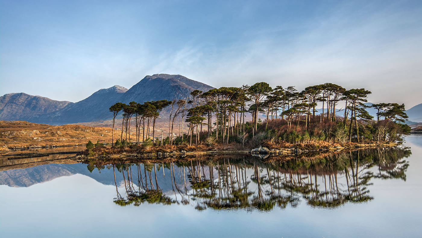 Highly Commended - PDI - Pine Island - Glen Banna