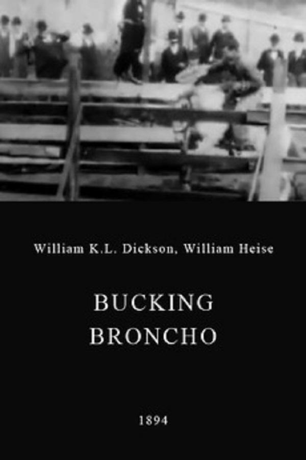 Bucking Bronchos.jpg