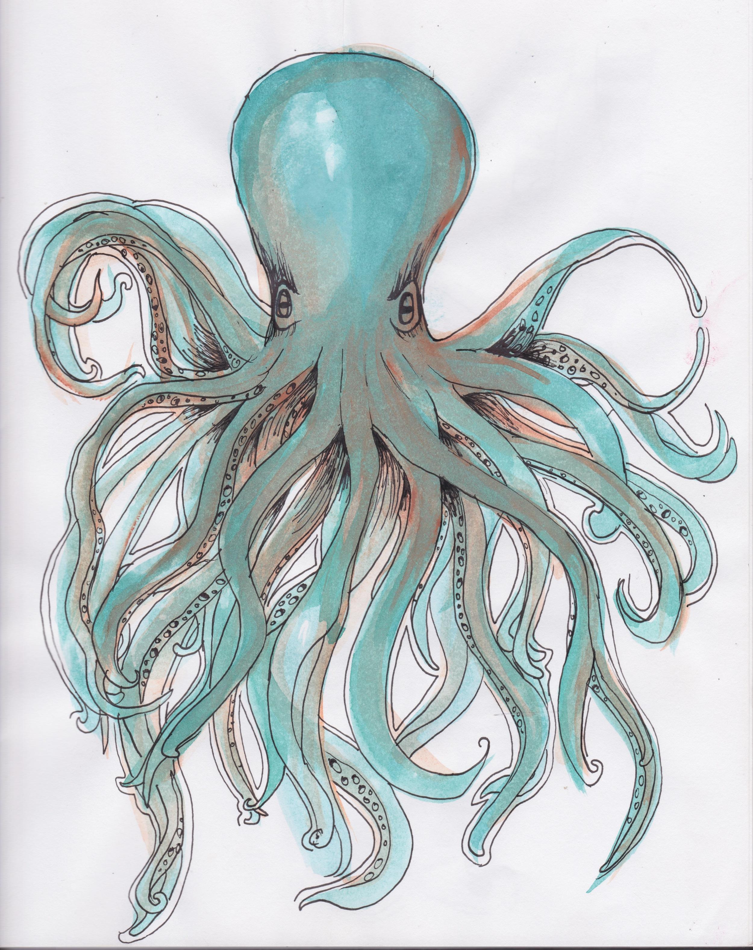 octopus.jpeg