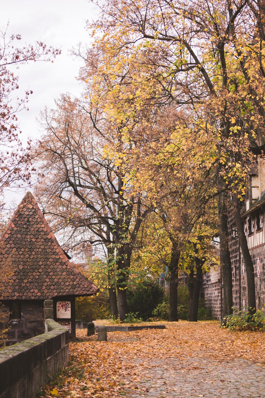 Nuremberg Germany - Traveling Igloo-197.jpg