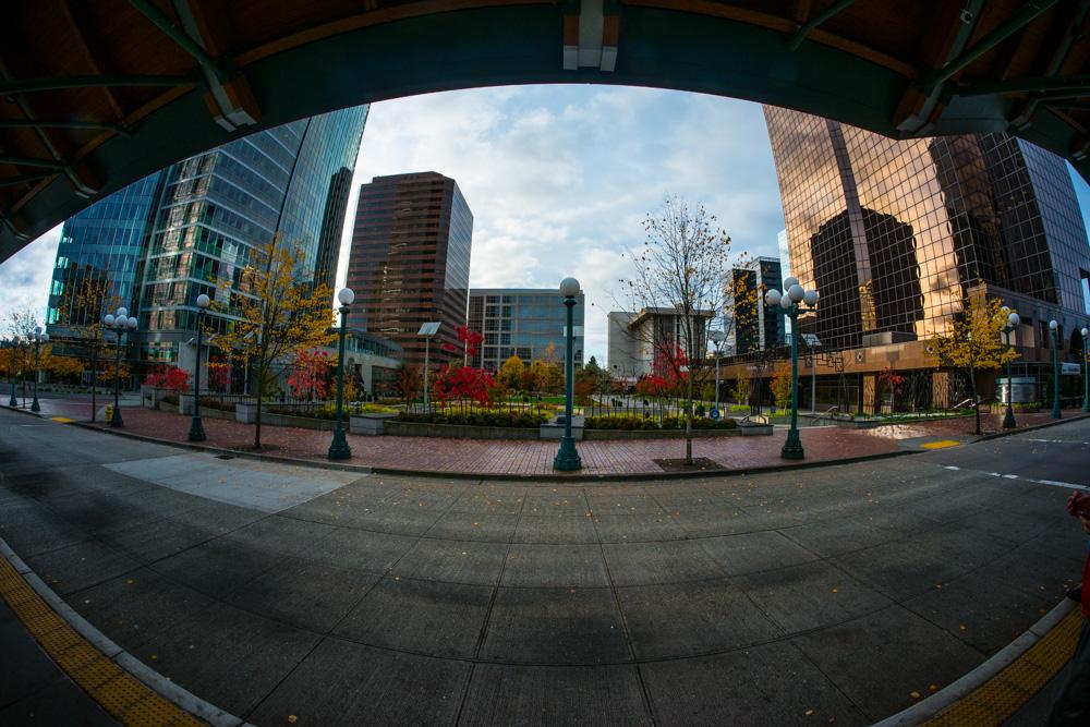 Seattle (1 of 32).jpg