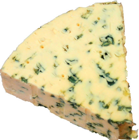 Figure 16-2 Cheese.png