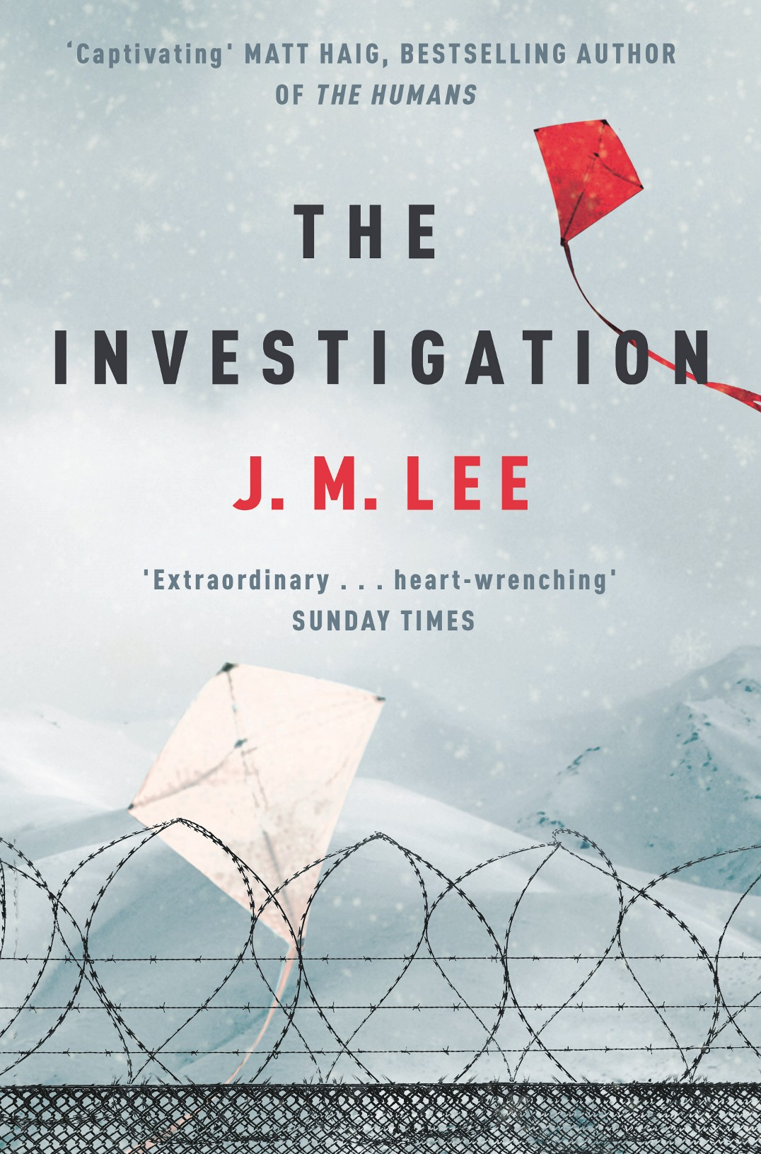 The Investigation PBB Fence JM.jpg
