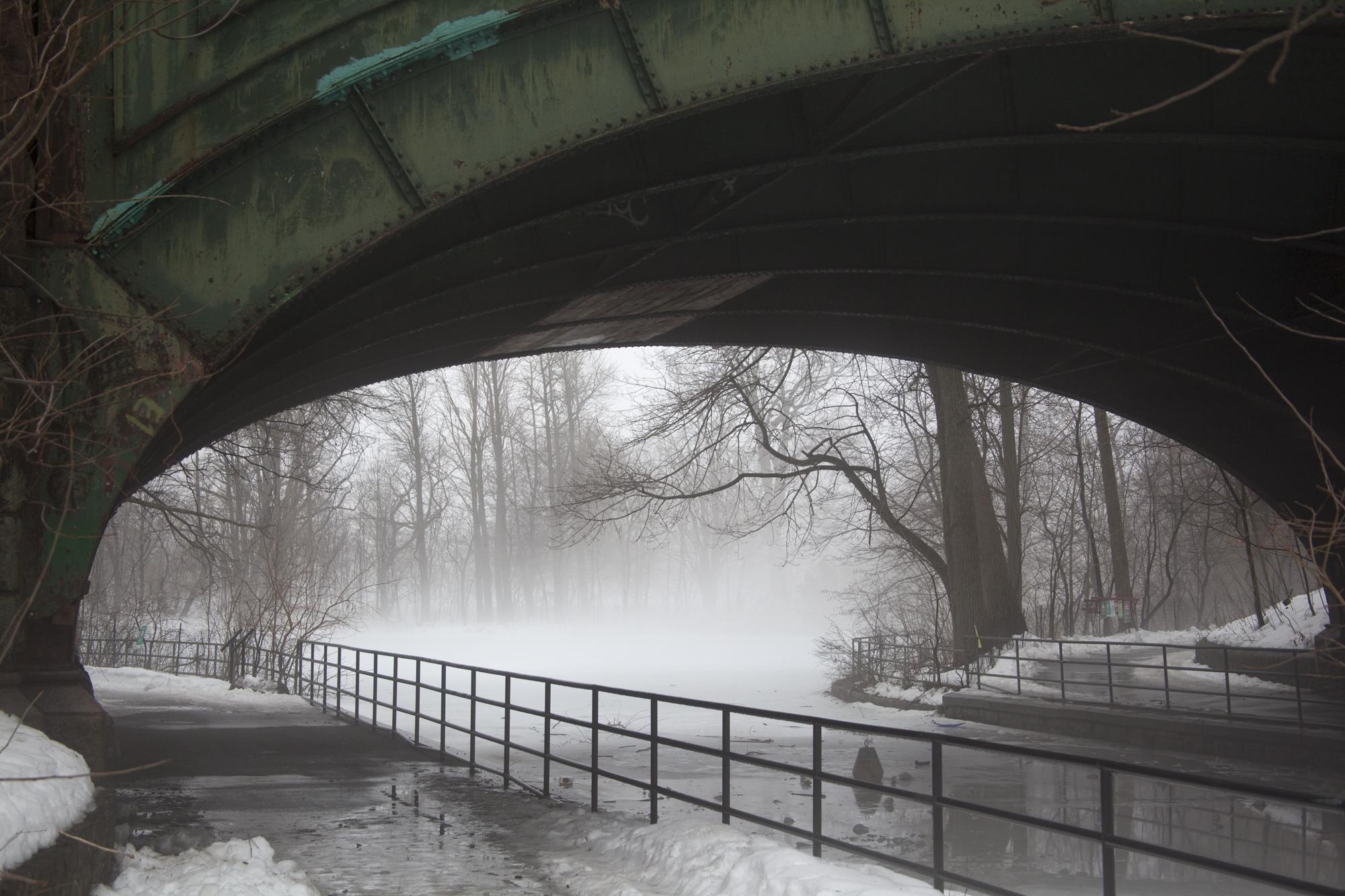 fogcity-2 2.jpg