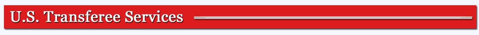 red t serv.jpg