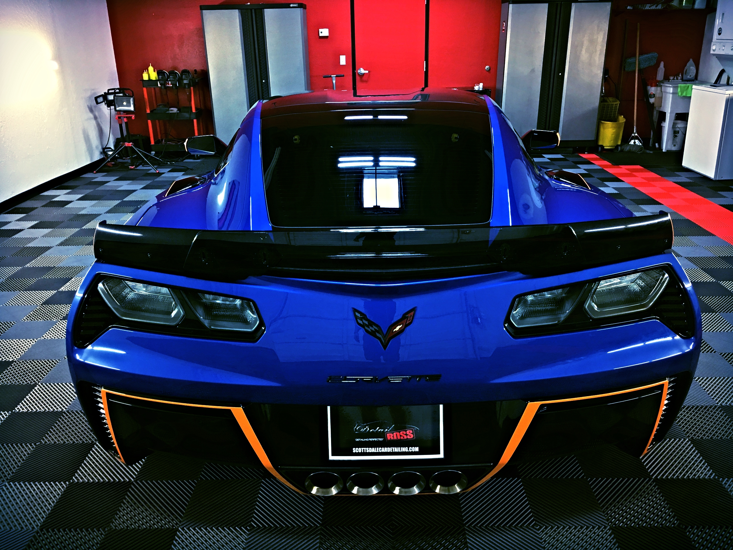 z06 lifevantage