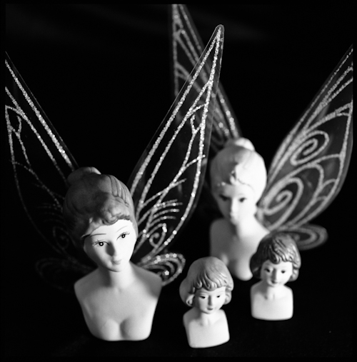 The Madness of Photographing Fairies