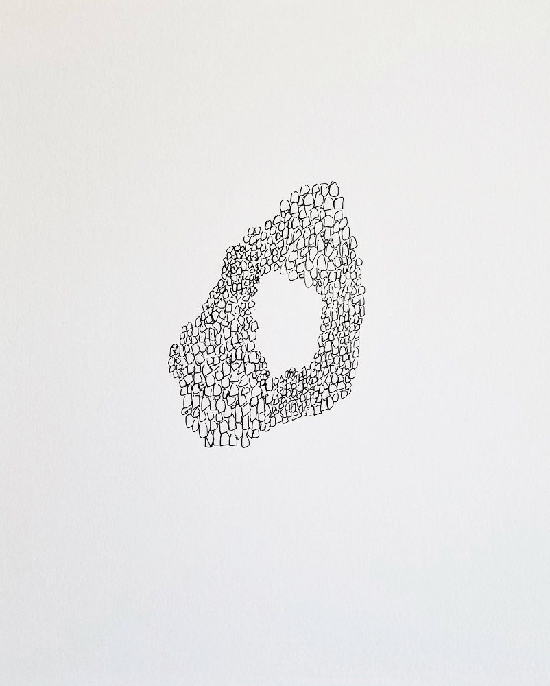 14 - Texture 2.jpg