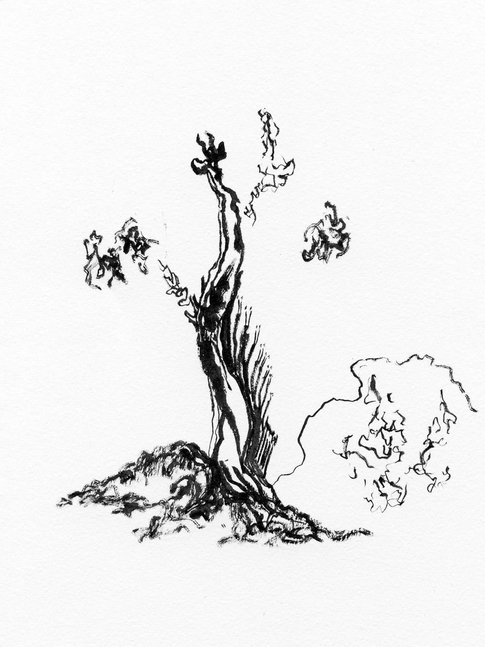 drawing010.jpg
