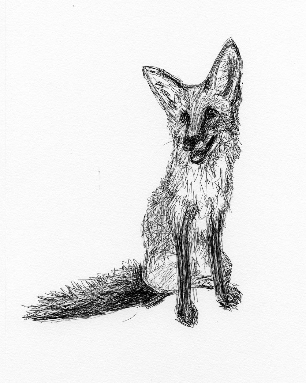 drawing009.jpg