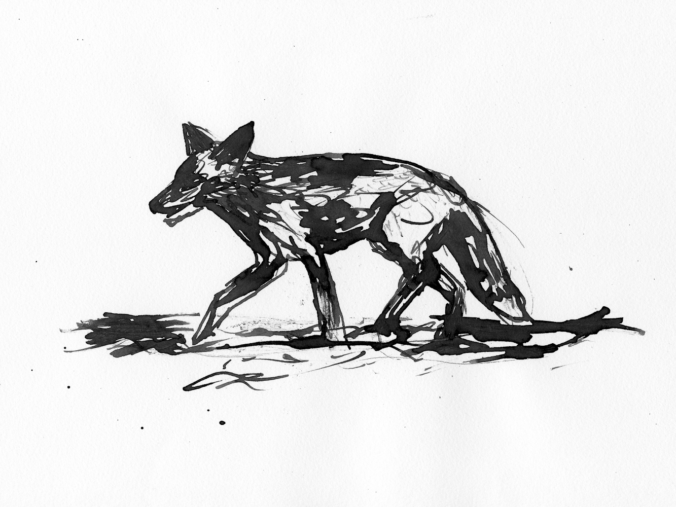 drawing015.jpg