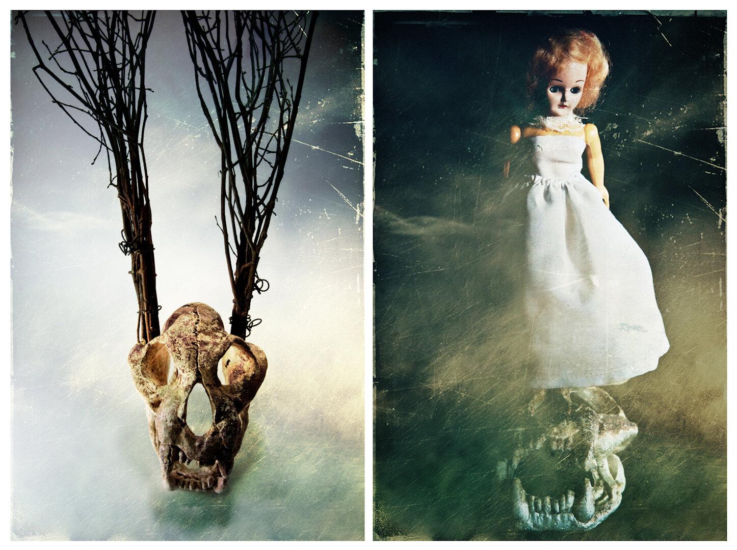 DarknessAtNoon_A09_DawnBlanchfield.jpg