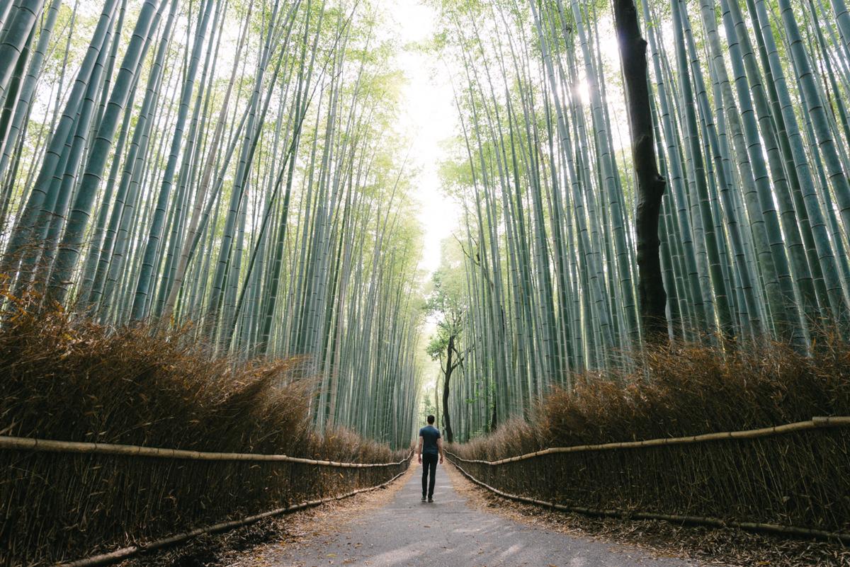 pketron arashiyama 5