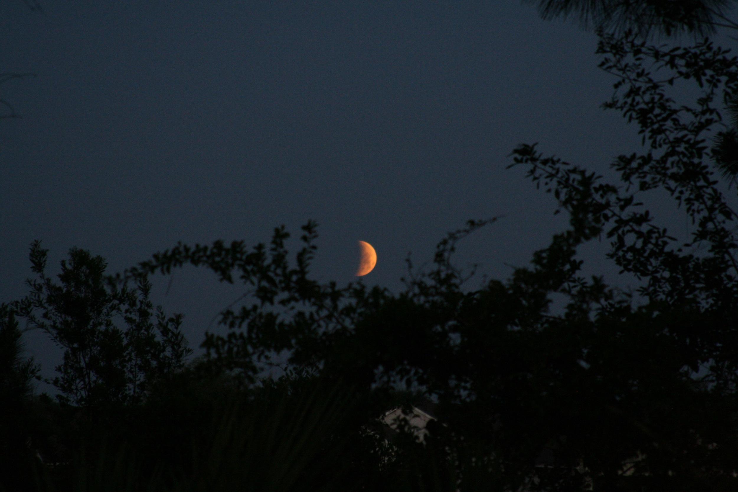 Lunar Eclipse April 20158.jpg