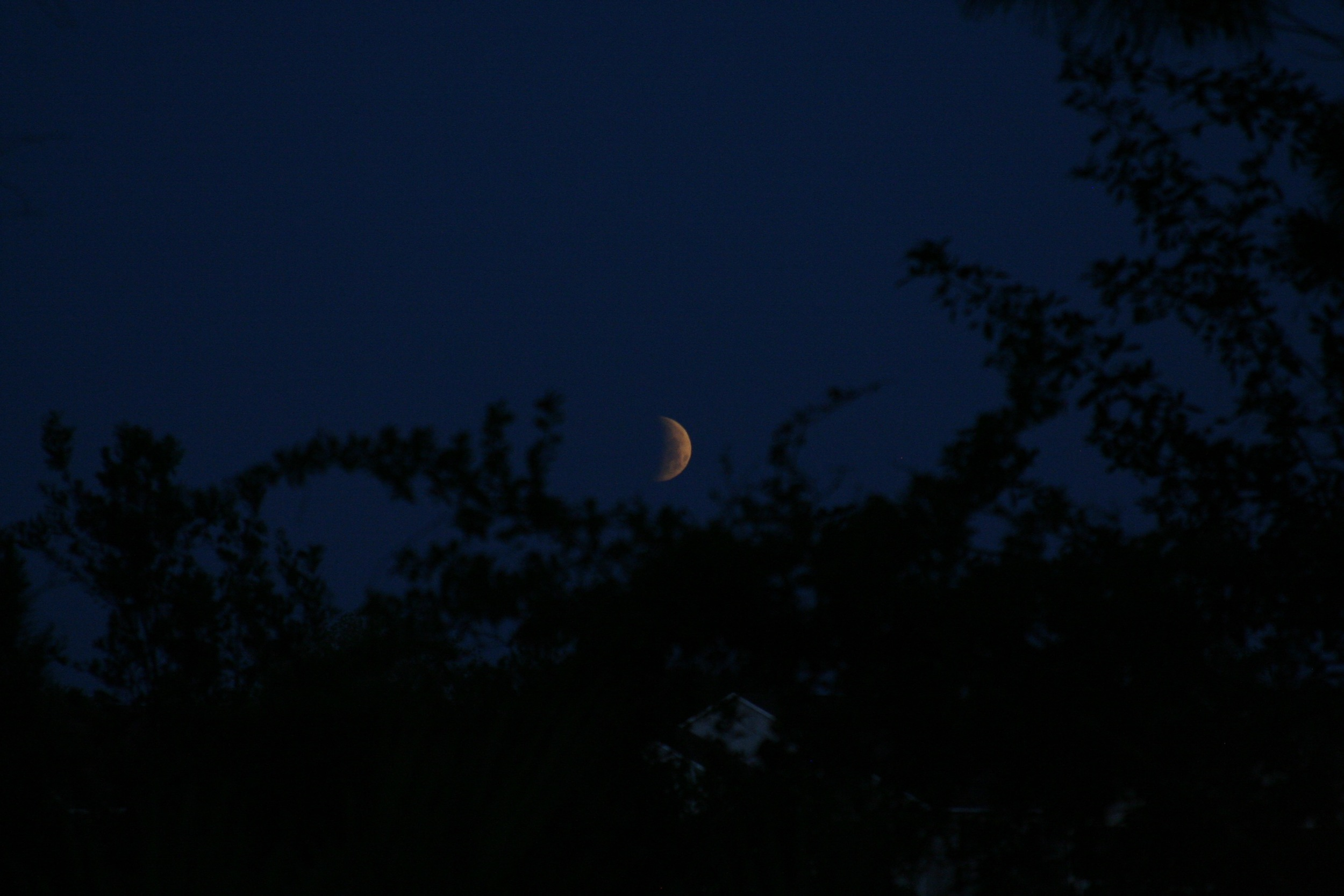Lunar Eclipse April 20159.jpg