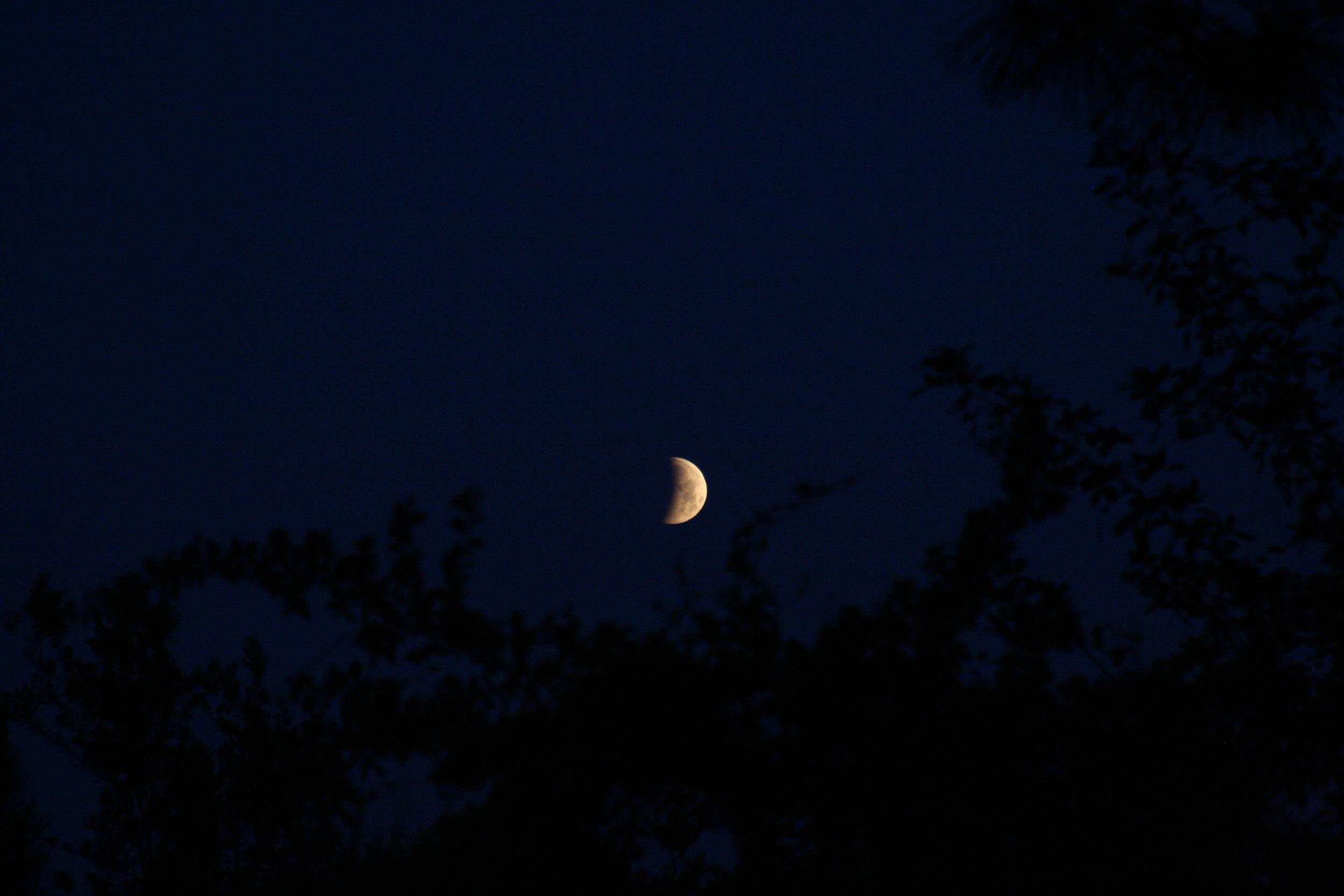 Lunar Eclipse April 20156.jpg