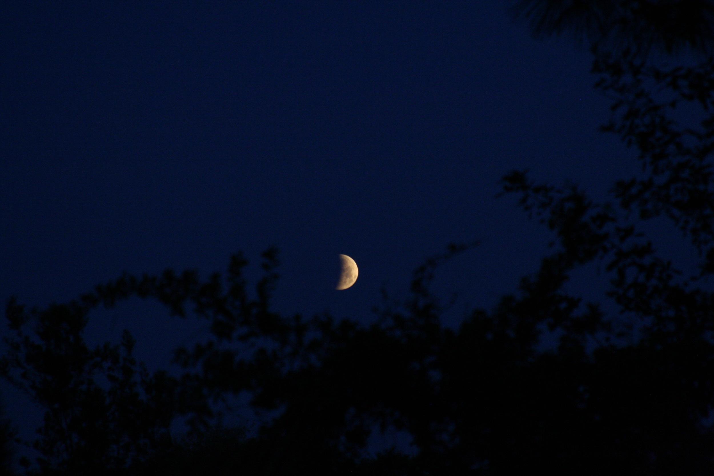 Lunar Eclipse April 20157.jpg