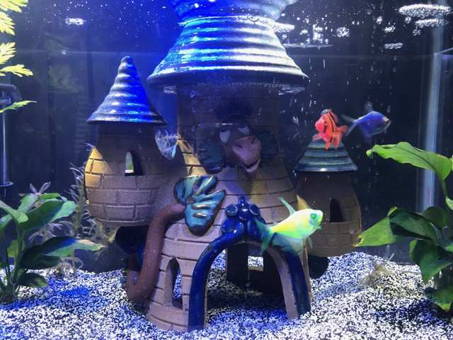 2017-11-24 - Clay Images fish tank castle.jpg