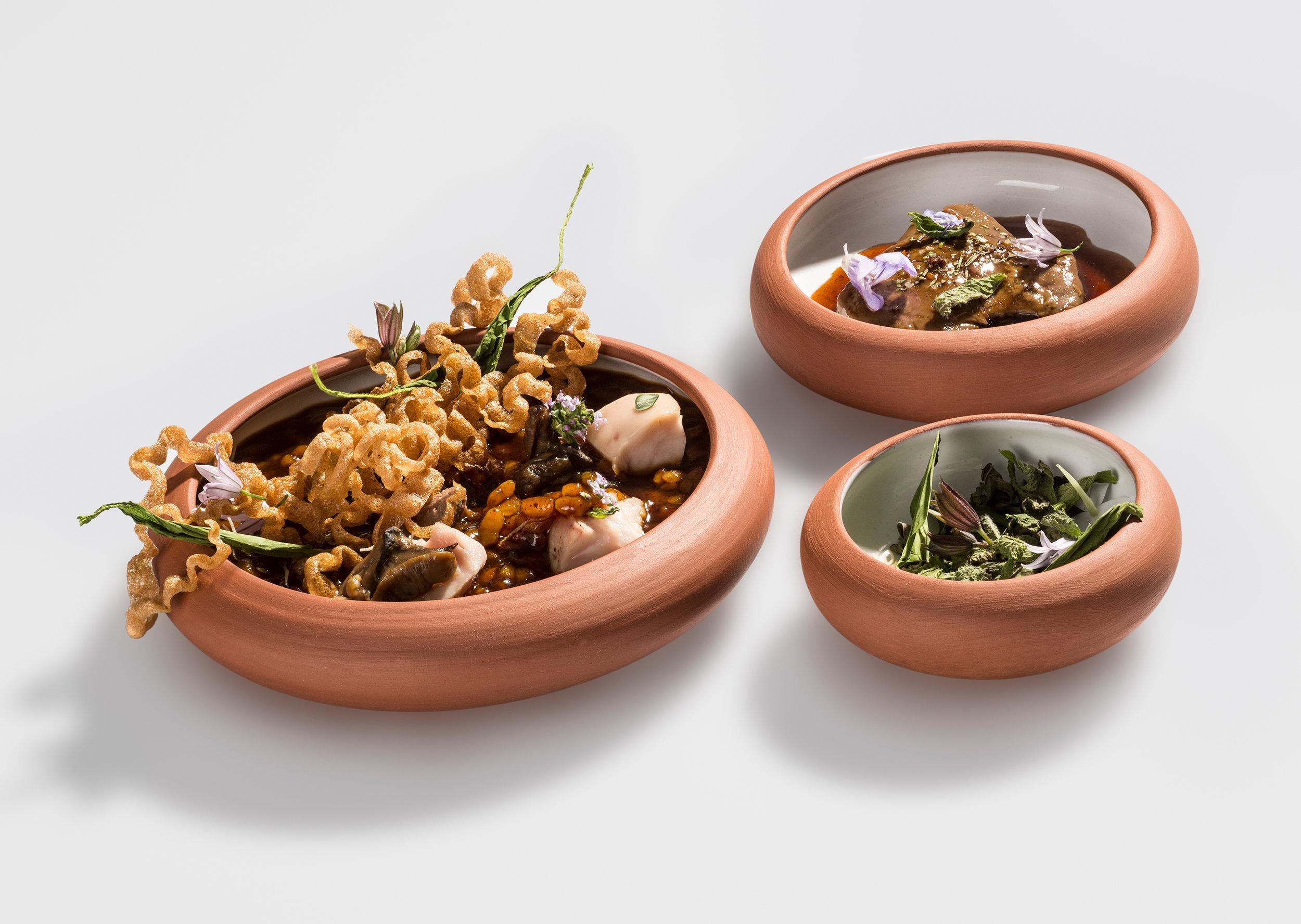 Gleva Rice Domanises Quique Dacosta.jpg