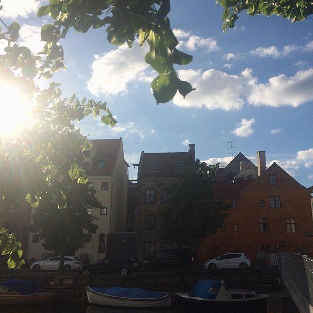 Copenhagen cuteness.