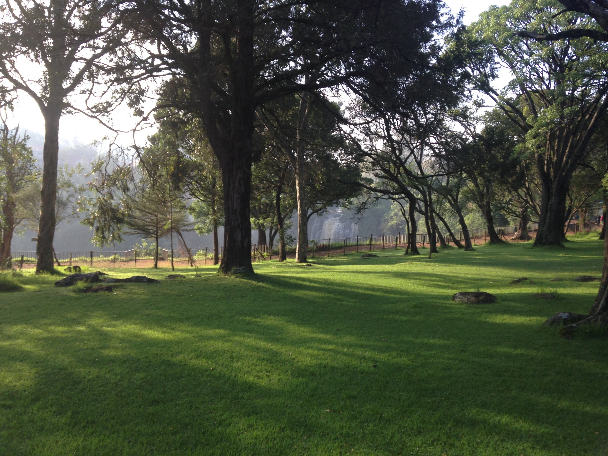 The View at Thompson's Falls Lodge in Nyahururu, we spent the night here post Lewa Marathon