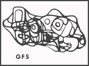 gfs300.jpg