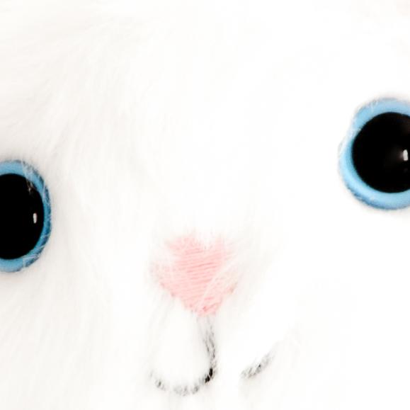 CatFaceCloseUse.jpg