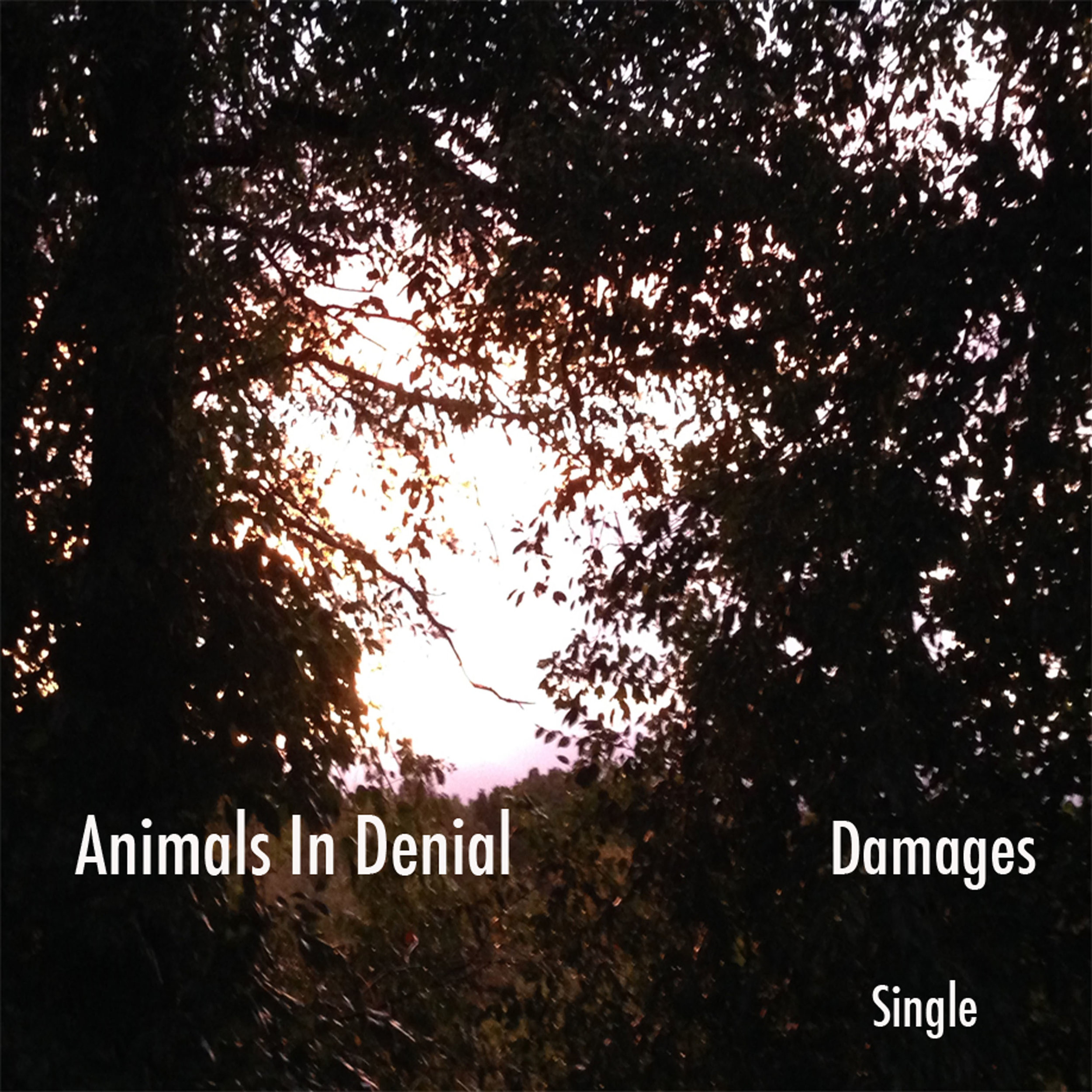 Damages-Single-Cover-2bc.jpg