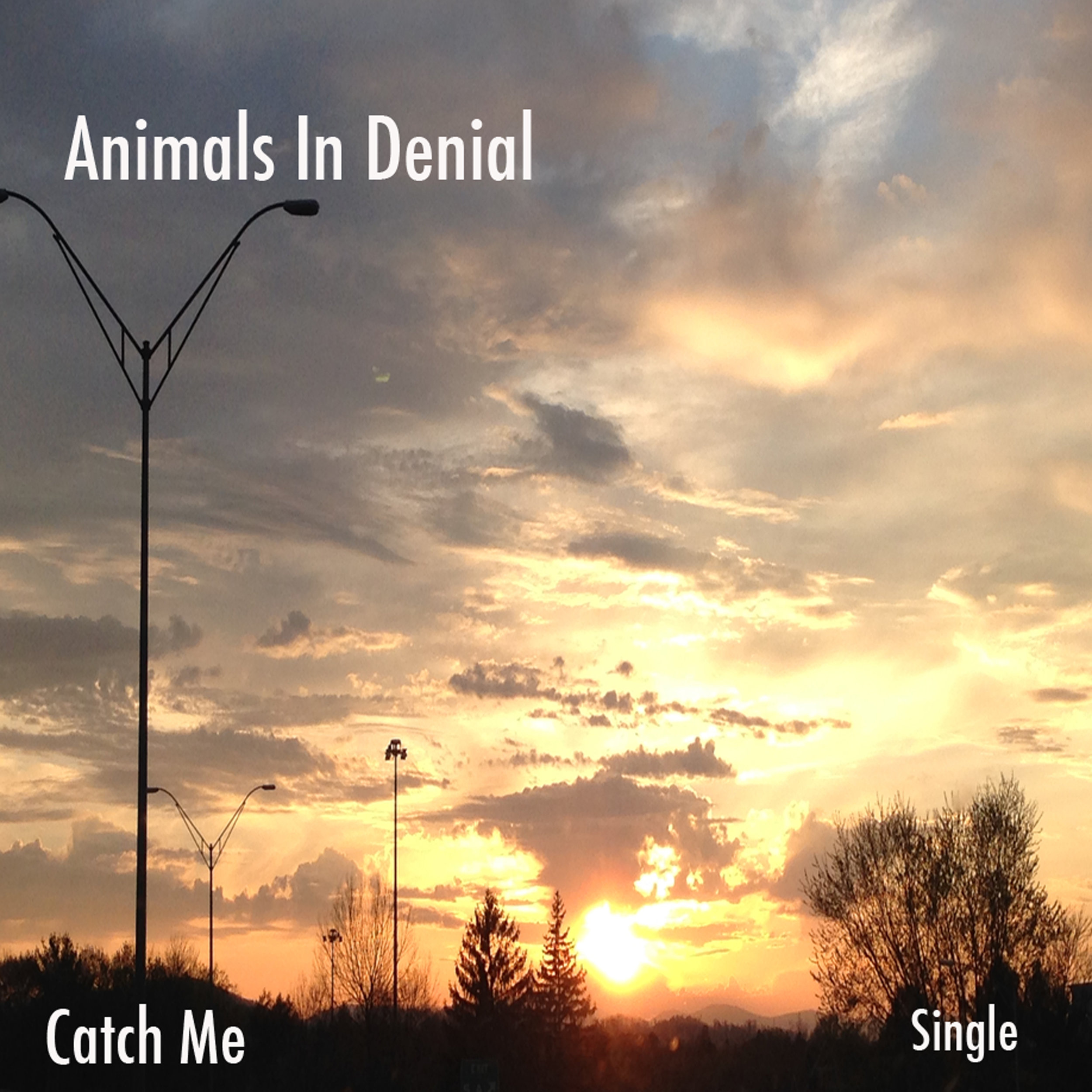 catch-me-cover.jpg