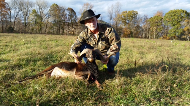 Carl Froshour with very nice Corsican Ram taken at Wilderness Hunting Lodge in Tennessee.