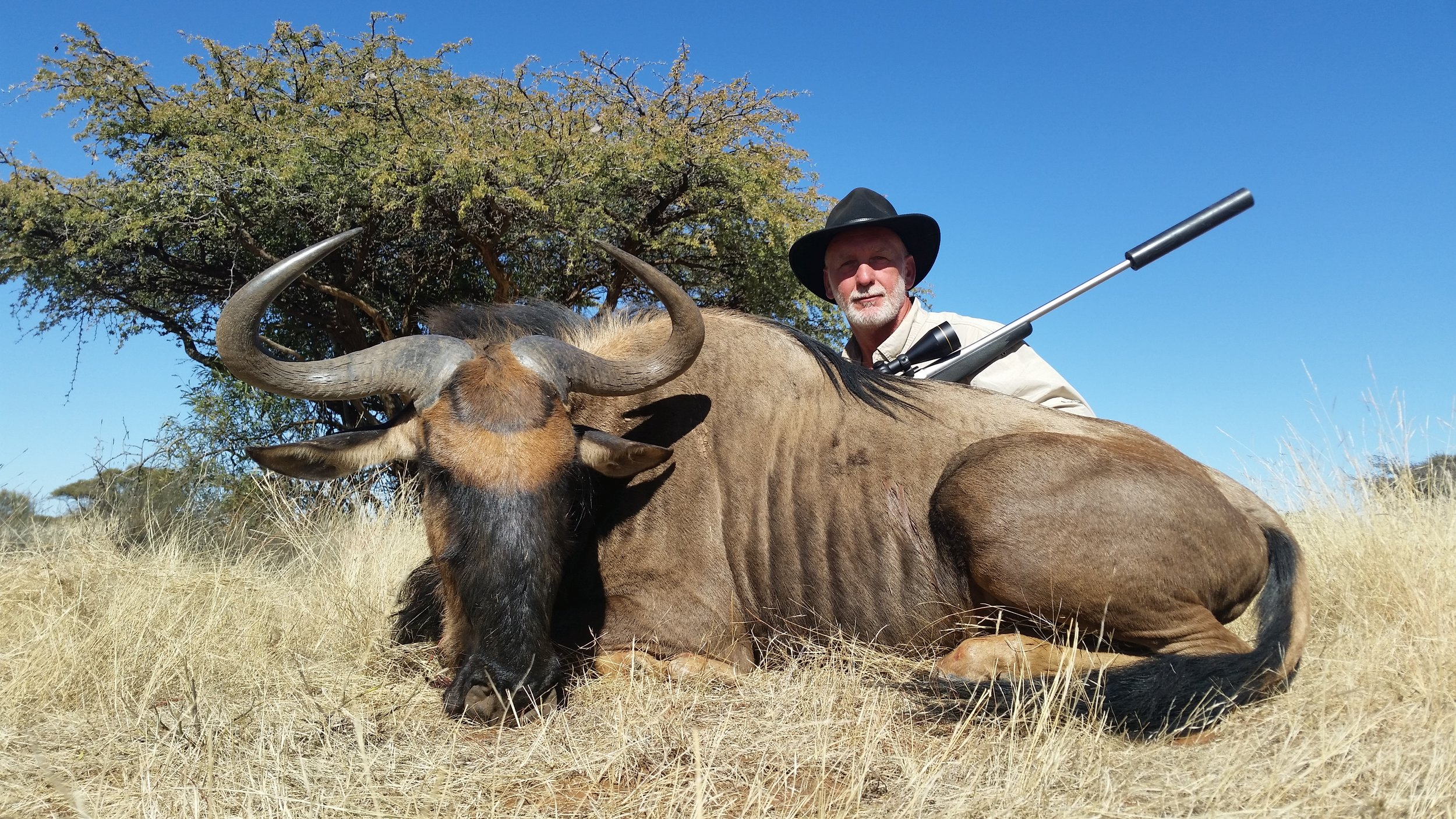 Carl's Wildebeest.jpg