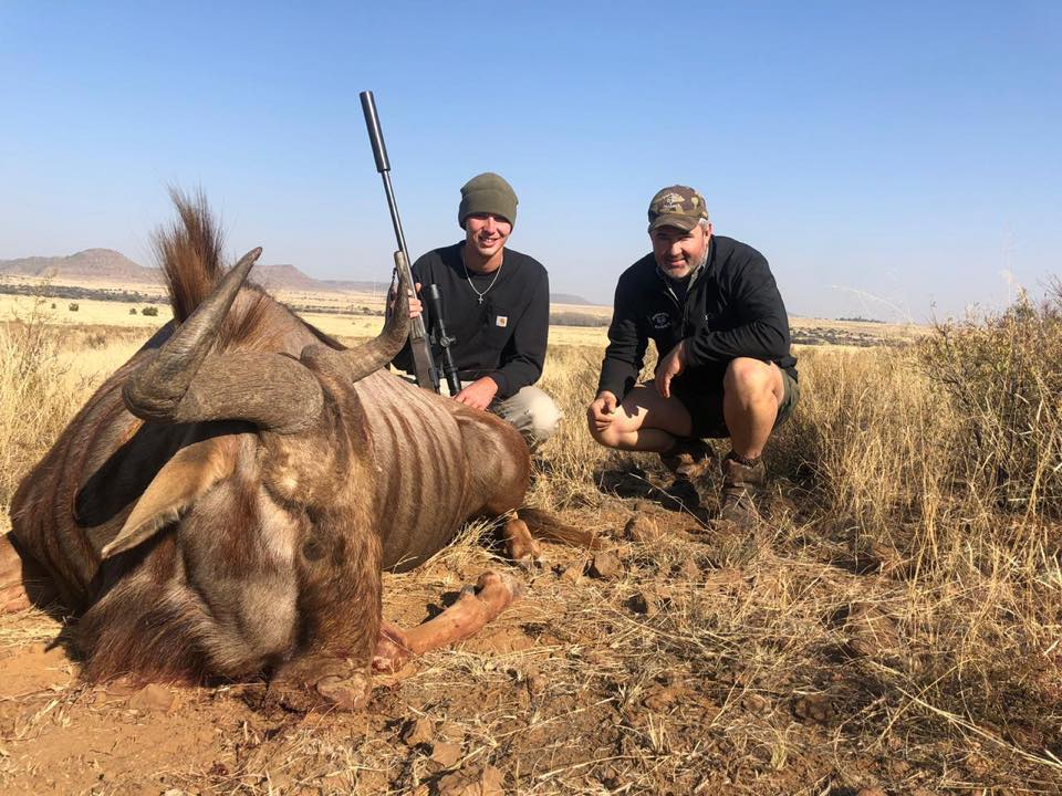 Trace Greene/Andri Fox, Golden Wildebeest