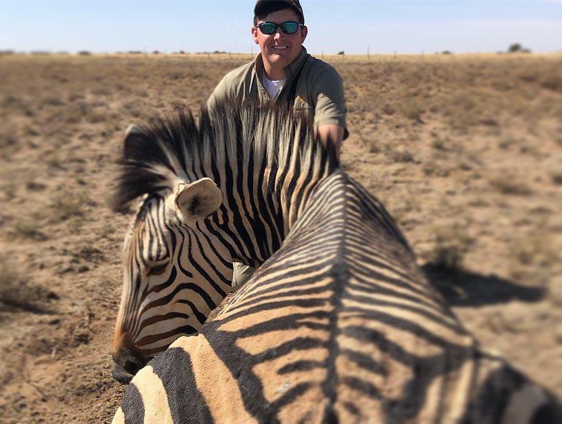 Colby Hamner Zebra