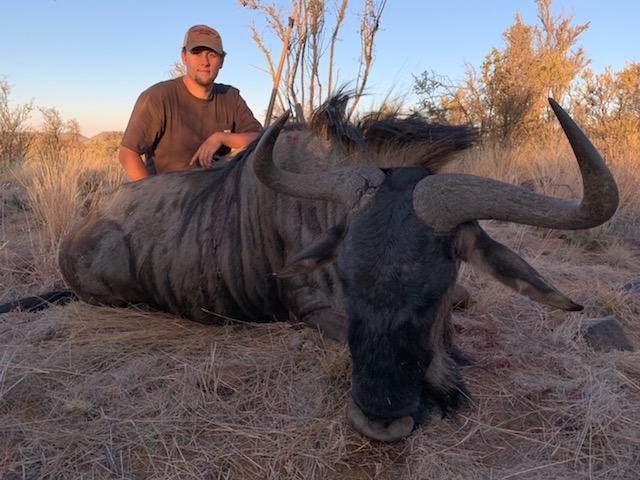 James Rogers Blue Wildebeest