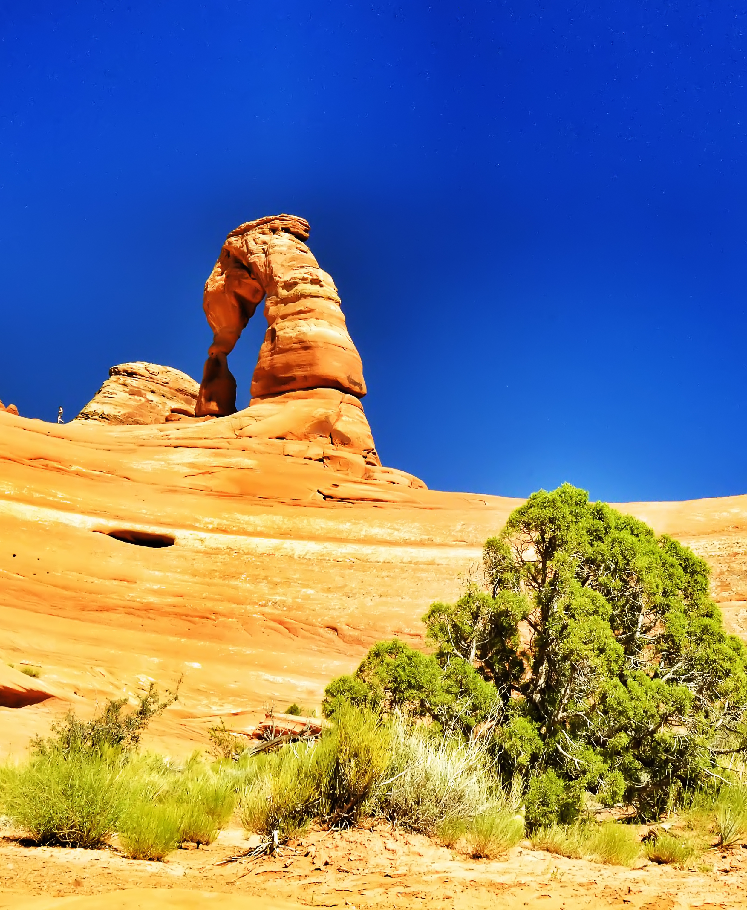 Delicate arch.jpg
