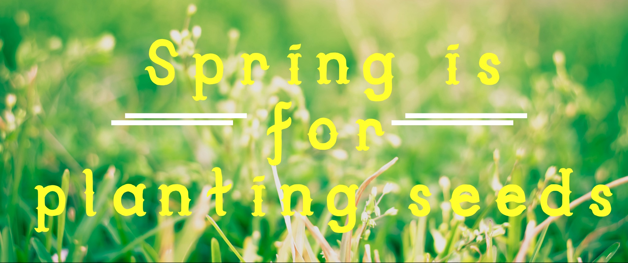 Spring_Planting_Seeds.jpeg