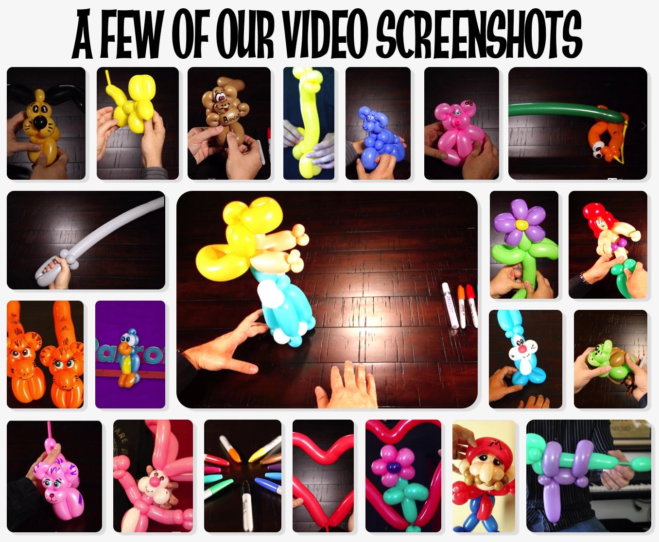 video screenshots.jpg