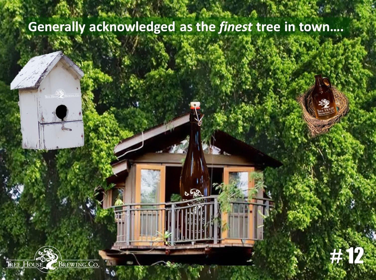 Treehouse Picture - Awhitney v1.jpg