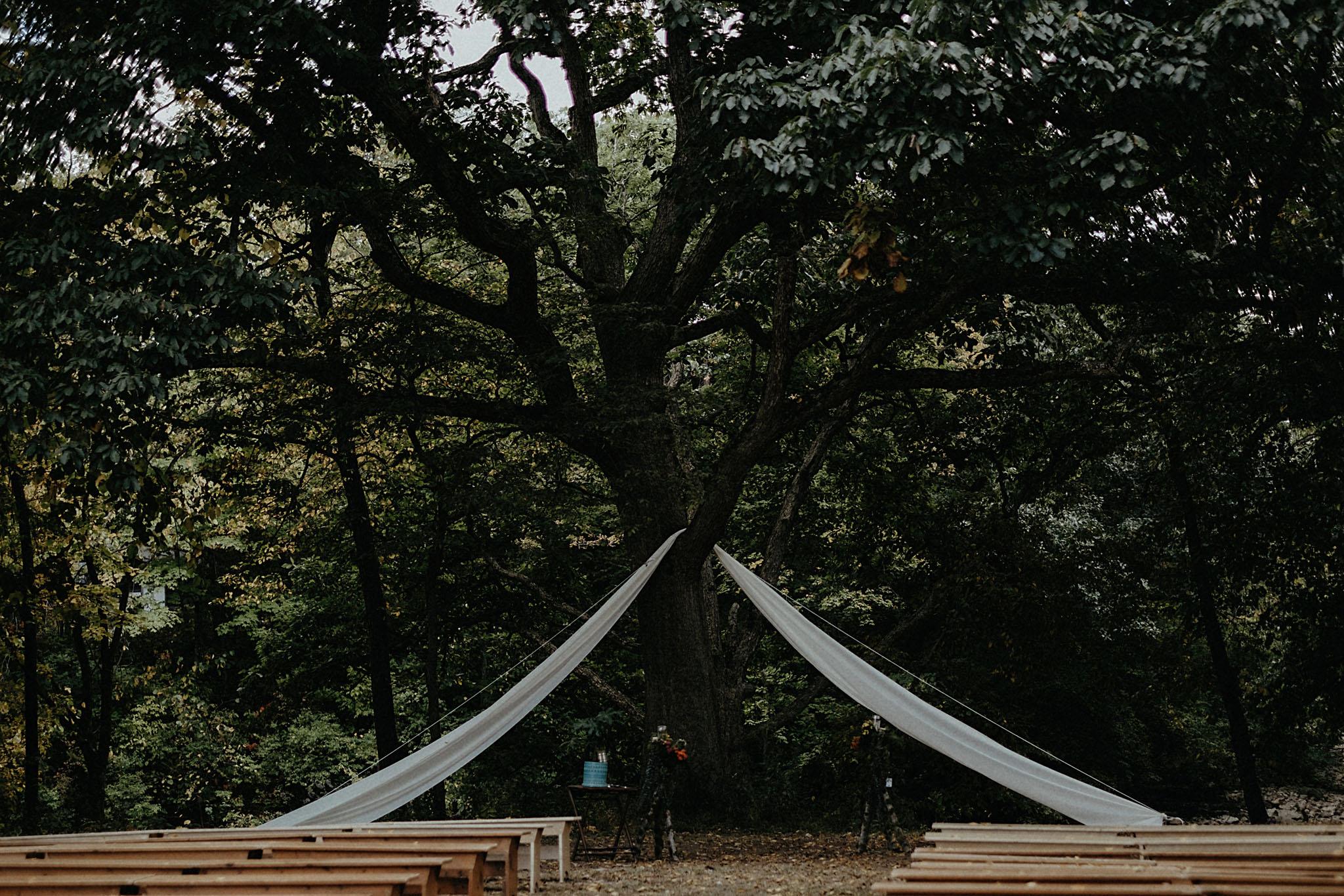Meghan-Dani-Camp-Wedding-15.jpg
