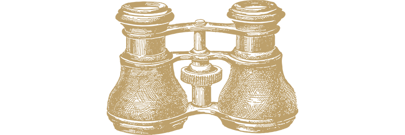 binoculars-gold.png