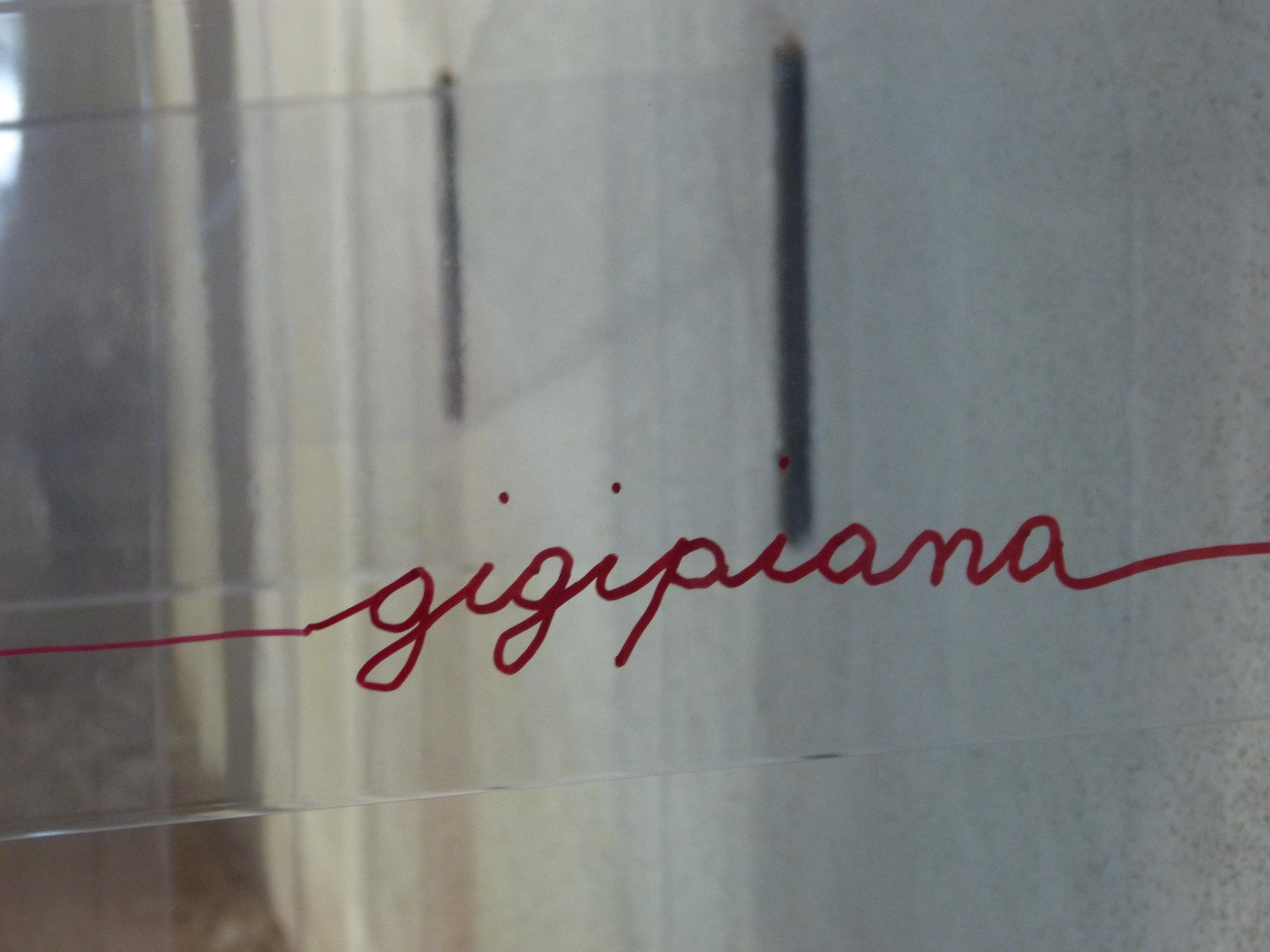 Piana G. - La differenza è impercettibile ma sostanziale (5).JPG